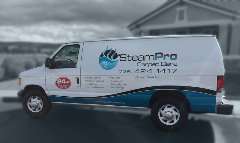 Steam Pro Carpet Care